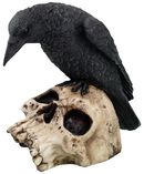 Ravens Remains - Raven on Skull