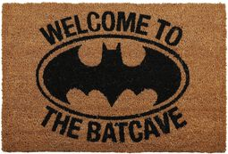 Welcome to the Batcave