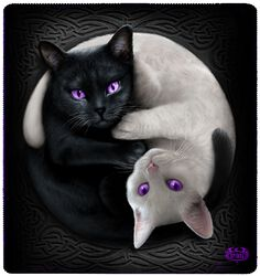 Yin Yang Cats Fleecepledd