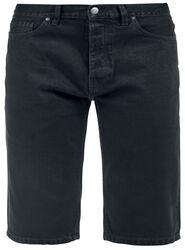 Michigan Shorts